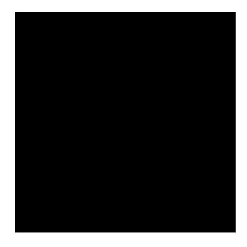 Diriyah Gate Development Authority Logo Black